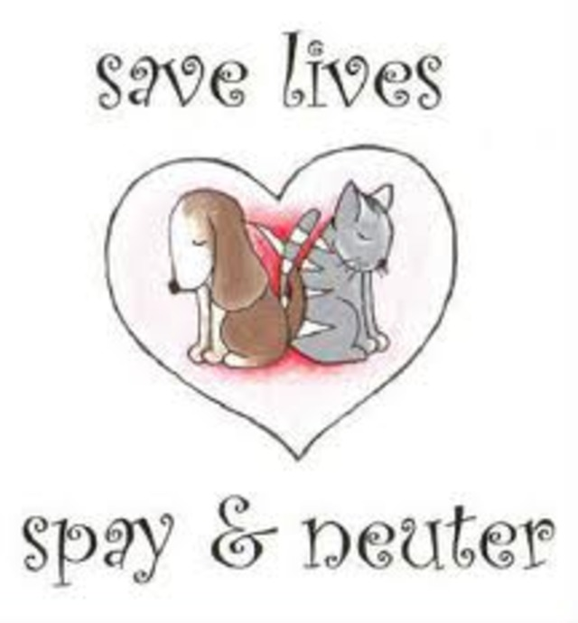 SAVE ALABAMA'S SPAY NEUTER CLINICS (AL RESIDENTS ONLY PLEASE)