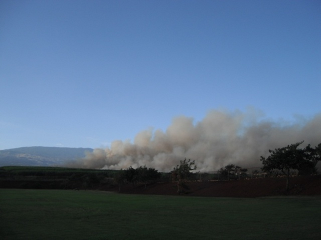 Stop burning sugar cane fields in Maui