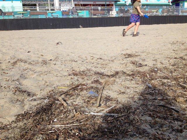 access safe and clean beaches in Santa Cruz, CA