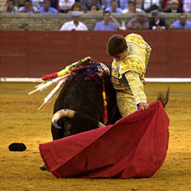 Assina pelo fim das touradas / sign to end bullfights