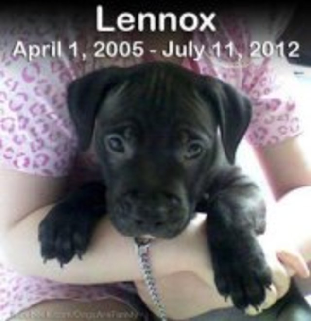 In the name of Lennox we fight against BSL