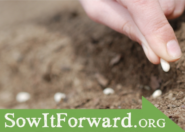 Sow Gardens Forward!
