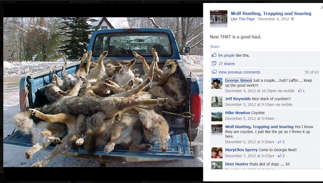 Force Facebook to Remove Animal Torture Page