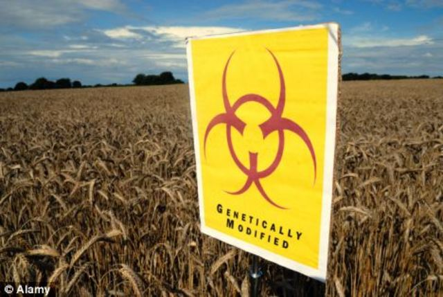 Join the Non-GMO Tipping Point Network & Pledge to Boycott Genetically Modified Organisms (GMOs)