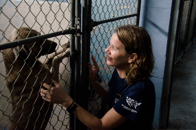 On the ground after Hurricane Isaac: Support the HSUS Disaster Relief Fund
