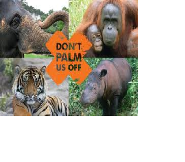 ban the Tiger temple