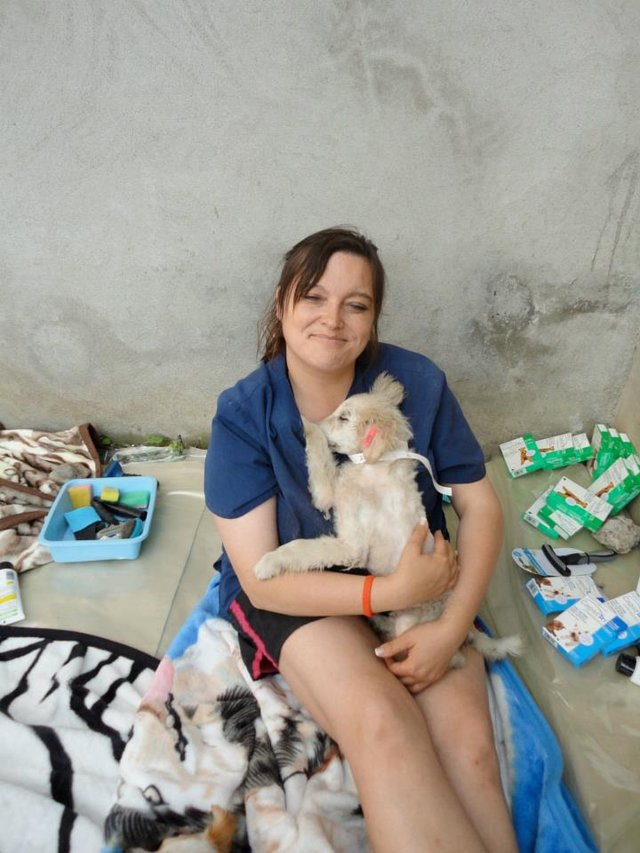 Global Giving Fundraisers for Spay of Cats and Dogs!