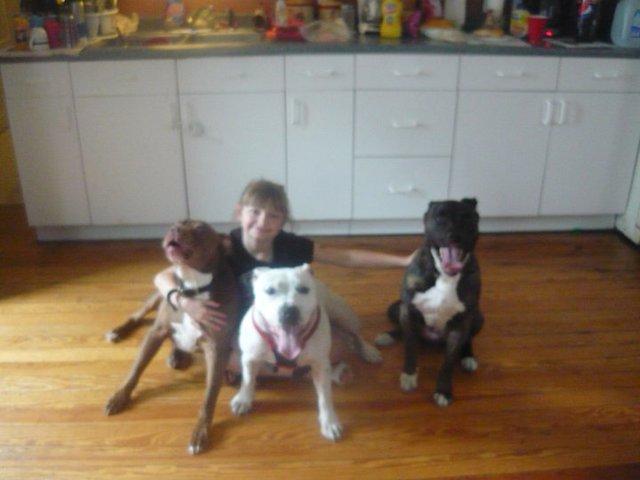Keep Buddy and Daisy home