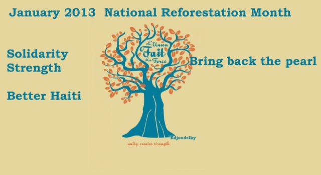 Help  January 2014,  Haiti National Reforestation Month