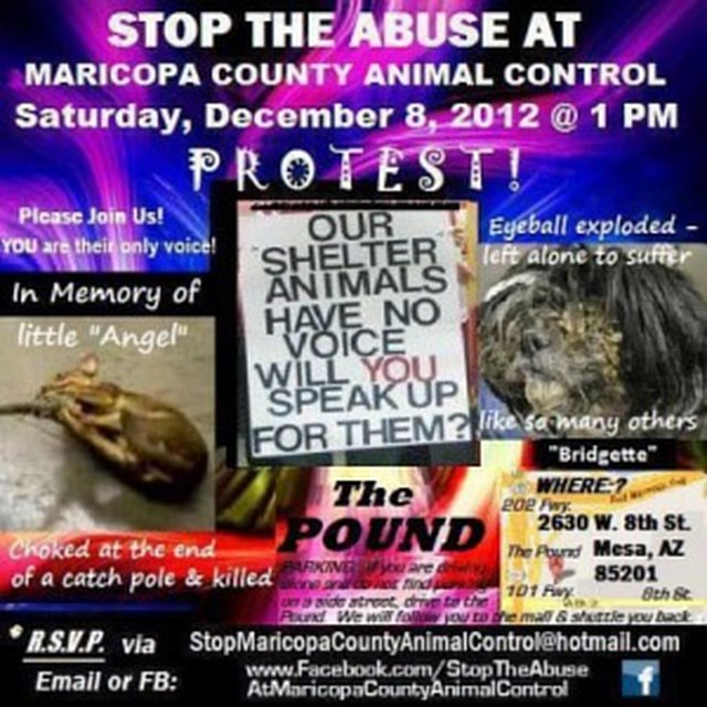 URGENT - Protest Animal Cruelty at MCACC (Animal Control) and demand humane changes!