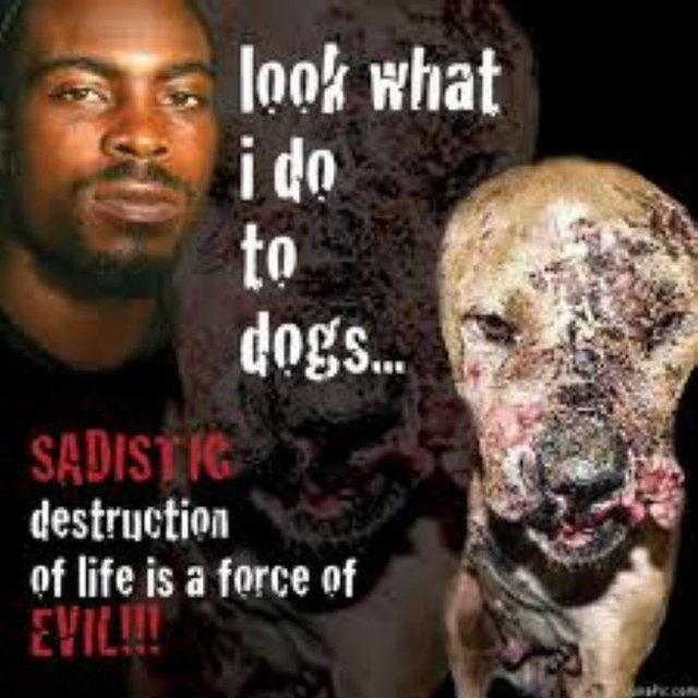 Stop Nike from Supporting Animal Cruelty!!!