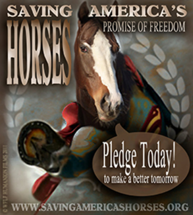 save horses