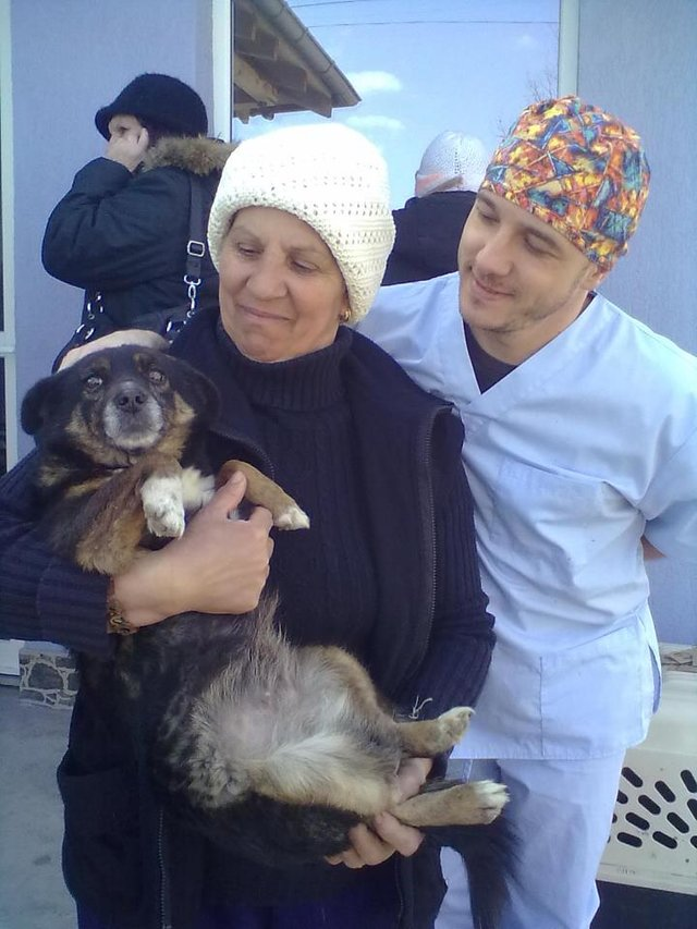 Romania Animal Rescue March, early April, newsletter