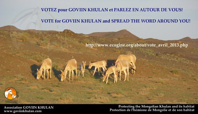 VOTE for GOVIIN KHULAN until April 28!