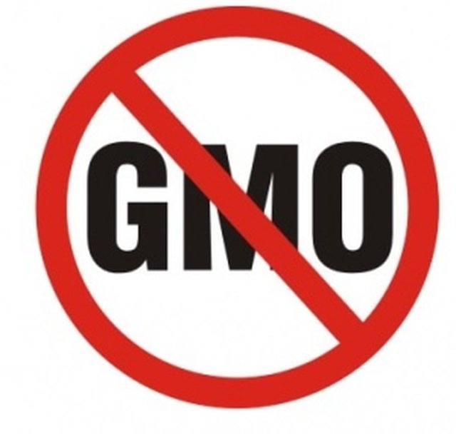 STOP Supporting GMO COMPANIES with your wallet