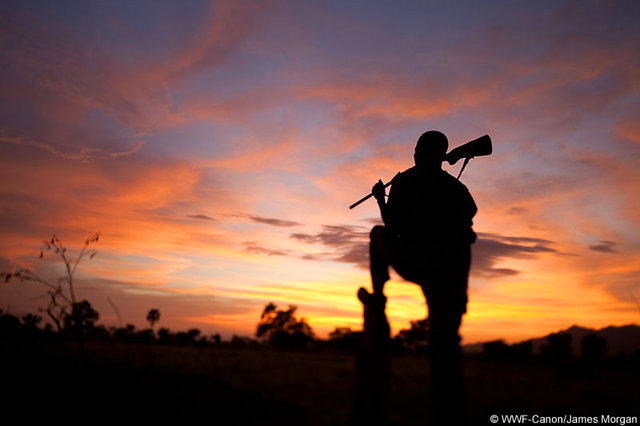 Back a Ranger - Stop Wildlife Crime
