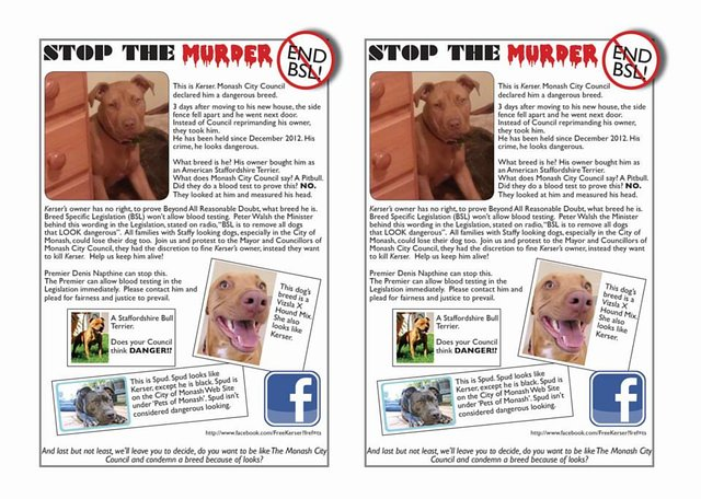 Stop killing our pets. END BSL - allow blood or swab tests in Legislation!