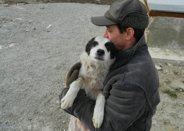 stop EU regulating dog adoptions abroad