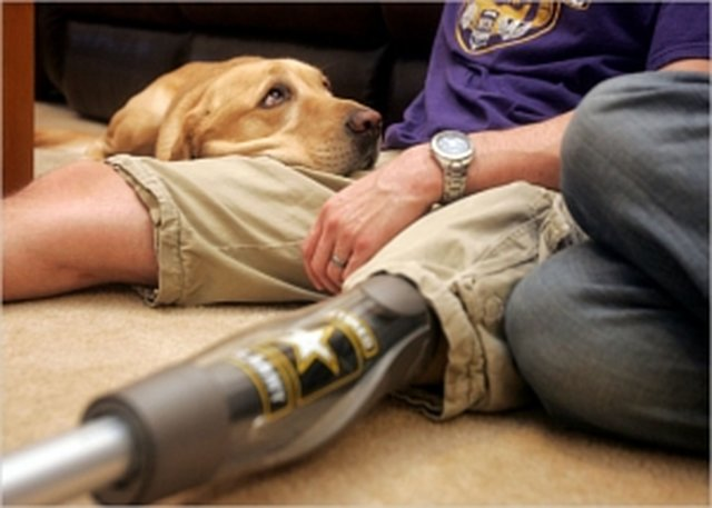 help fund Injured Veterans needing Service Dogs.