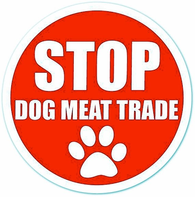 stop dog meat mafia